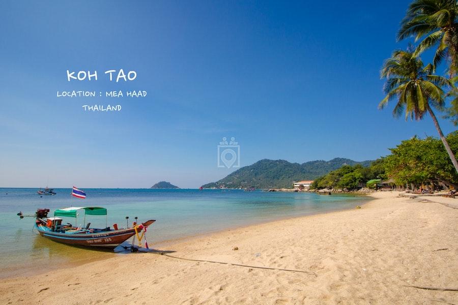 TAO HUB, Koh Tao