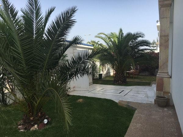Cogite, Tunis