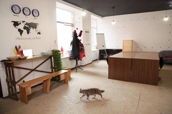 OK Factory Coworking, Lviv