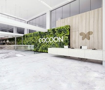 Cocoon Networks London profile image