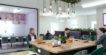 Purple® Office profile image