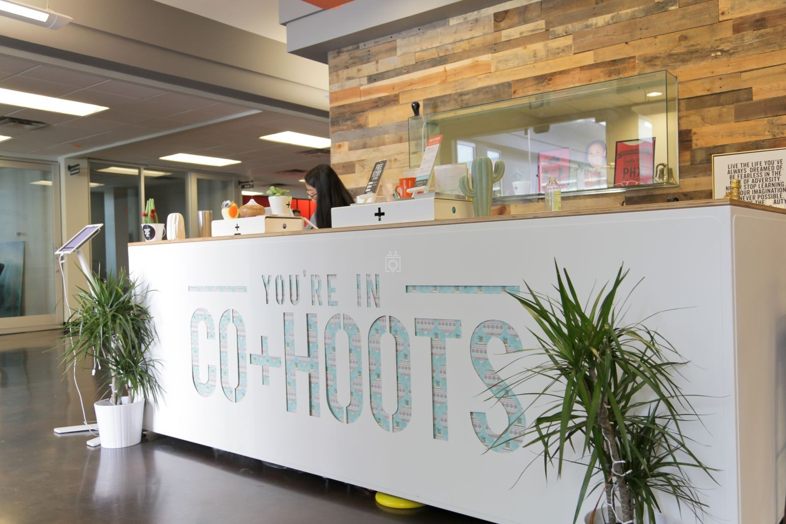 CO+HOOTS, Phoenix - Read Reviews & Book Online