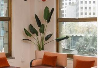 The Wing San Francisco image 2