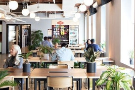 WeWork 353 Sacramento St, Mill Valley