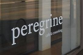 Peregrine, longmont