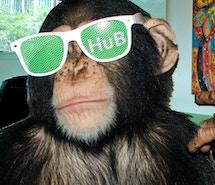 Hub Sarasota profile image