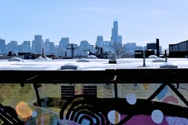 Domino, Evanston