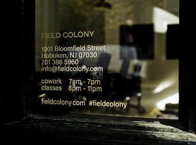 Field Colony image 5