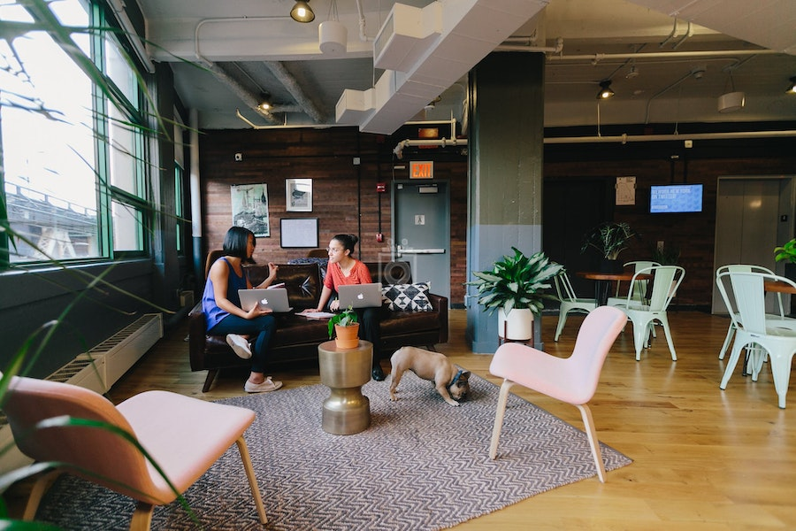 WeWork Dumbo Heights, NYC
