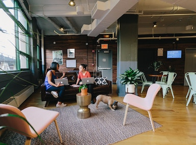 WeWork Dumbo Heights image 3