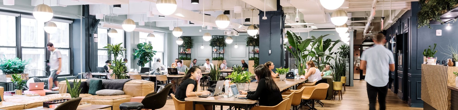 wework penn station nyc read reviews book online