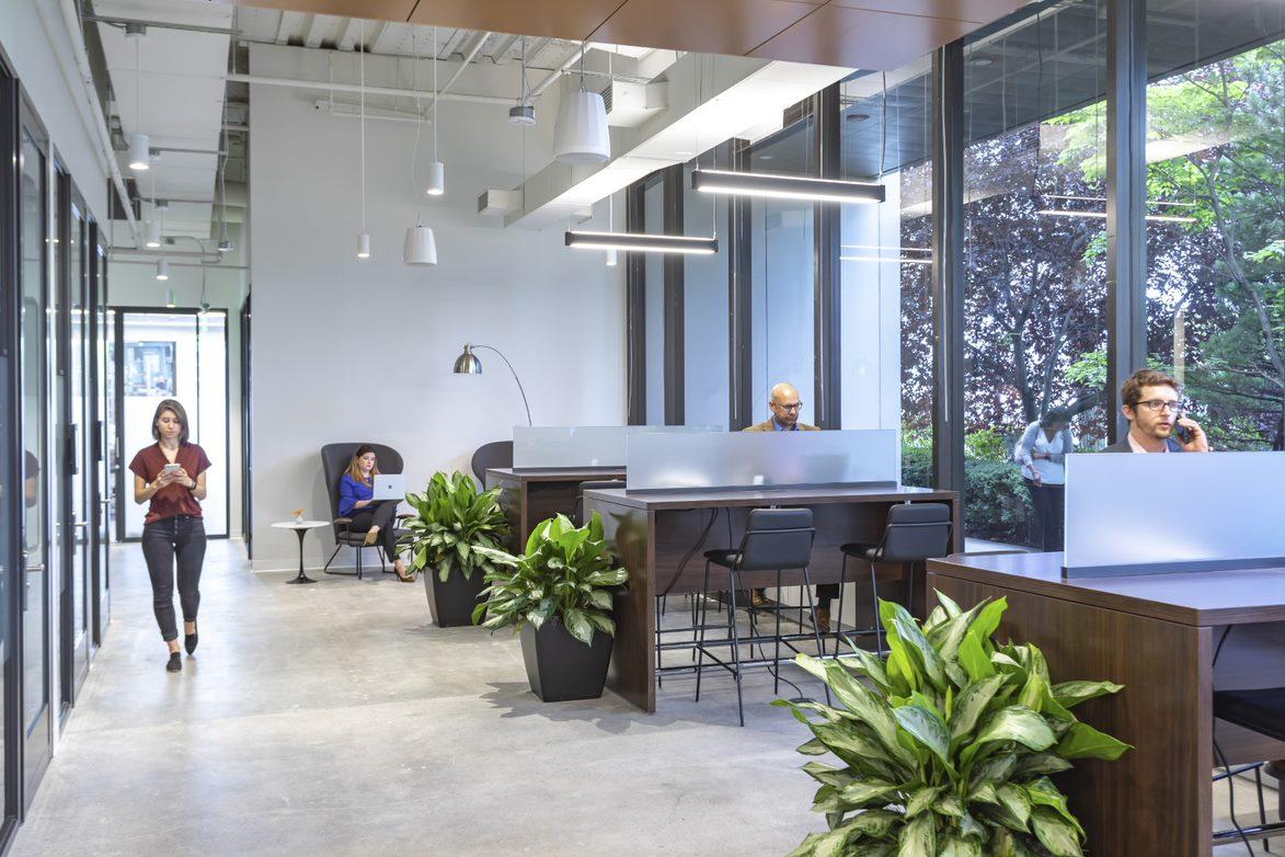 Serendipity Labs White Plains – Downtown, White Plains