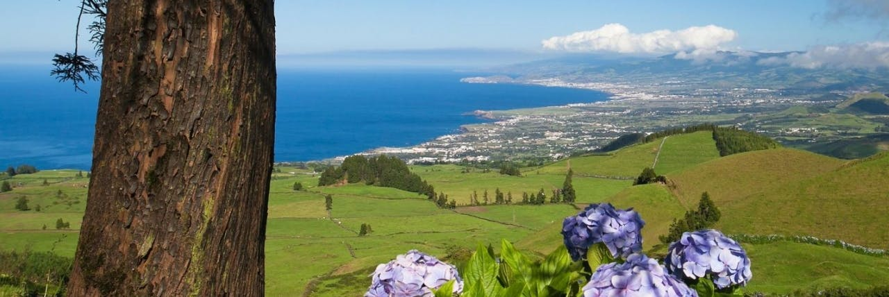 Picture of Sao Miguel