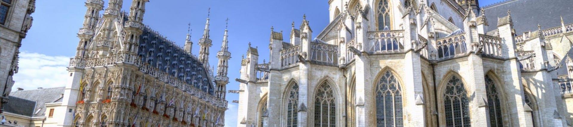 Picture of Leuven