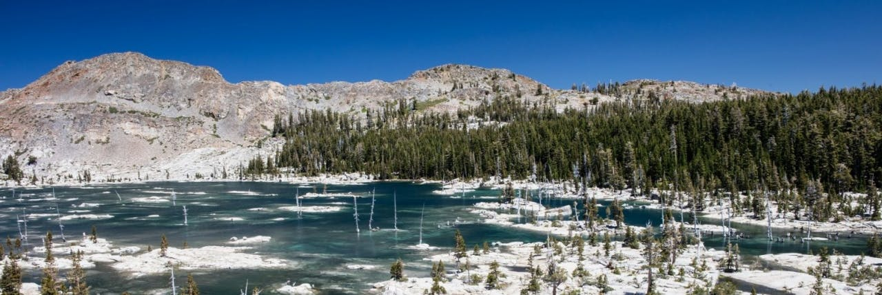 Picture of Alpine Meadows